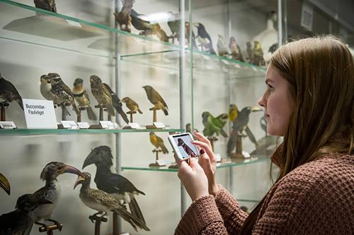 Digitaler Wandel in Museen: Wie Übersee Museum, Kunsthalle Bremen und das Auswandererhaus Bremerhaven diese Herausforderung meistern